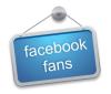 facebook-fan-page-fans.png